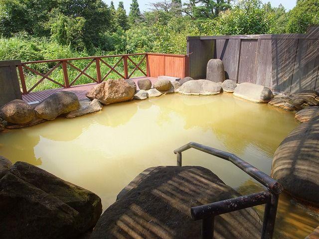 タオちゃんの温泉入りまくり : ...