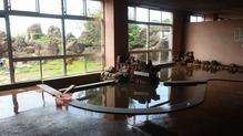 越後の里親鸞聖人総合会館西方の湯・内湯