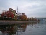 瀬田の夕照散策路の紅葉