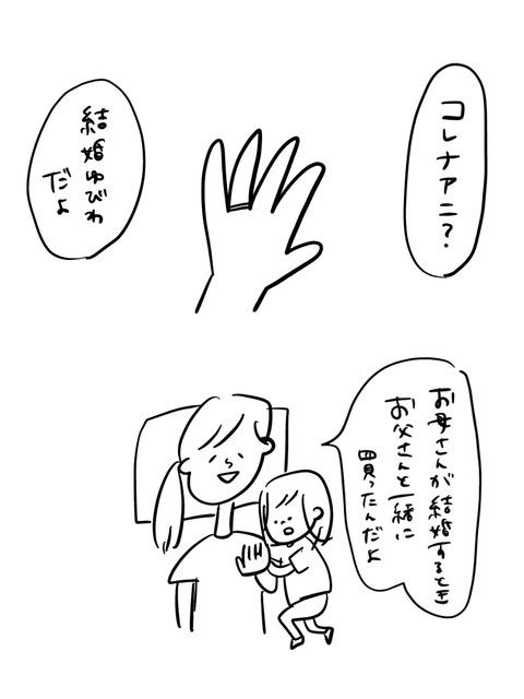 IMG_3532 2