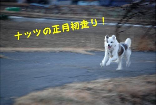 1初日の出・朝の散歩 (4)