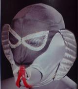 Gus Cobra