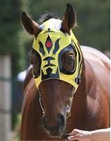 競走馬タイガーマスク