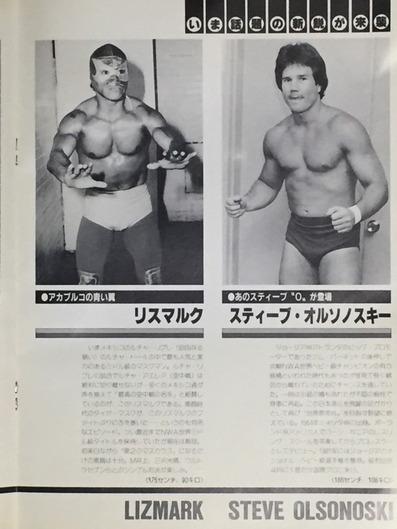 1984年 新春ジャイアント・シリーズ パンフレット