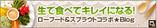 blog_bnr