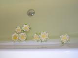 バスタブに浮かべたお花