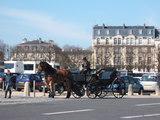 ベルサイユ宮殿の馬車