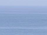 伊豆北川の海