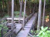 東館と本館をつなぐ橋
