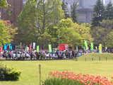 日比谷公園での憲法の日の集会