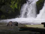 水量が増す 川床