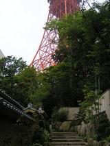東京タワーが…