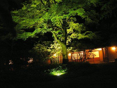 夜の亀の井別荘