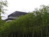 竹林 に うかぶ hyatt