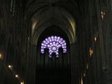 ゴシック建築内部からみる正面のバラ窓