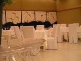 真っ白い テーブルに 墨絵のダチョウ