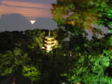 ライトアップの三重塔