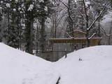 雪に埋まる図書室