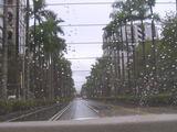 台北一きれいな道