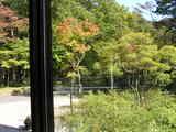 ロビー内部から見た秋の景色