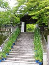 修善寺の階段