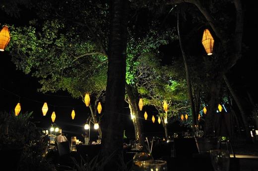 夜のアロワナ