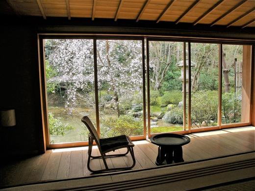 桜の見えるお部屋