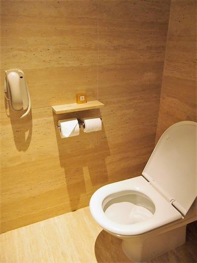 穴の大きいトイレ