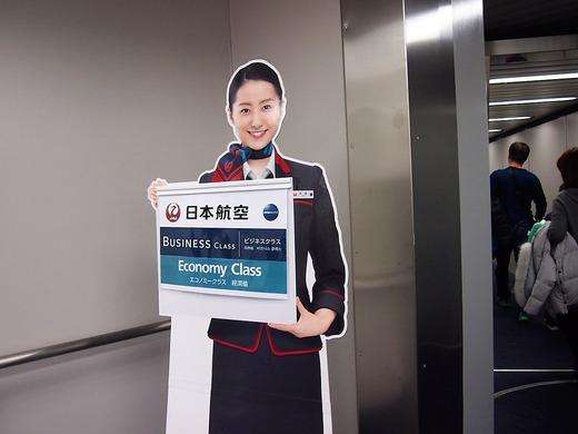 JALで帰国
