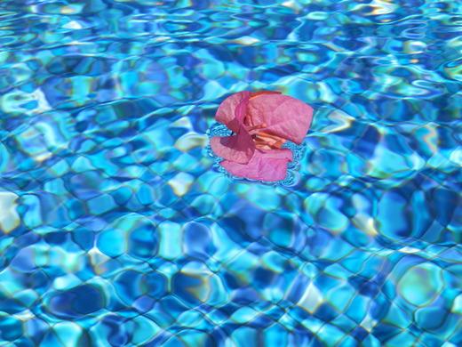 プライベートプール