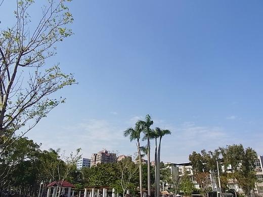 微熱山丘と虎屋の間の公園