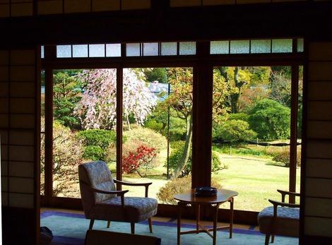 桜が見える縁側