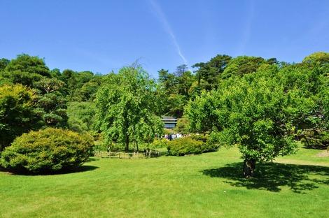 5月のお庭ツアー2