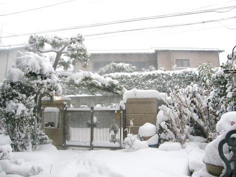 自宅門大雪
