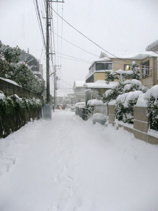 自宅前の大雪