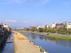のどかな加茂川