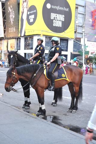 警官は馬に乗りパトロール