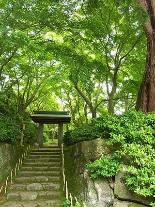 日本庭園、お茶室入り口