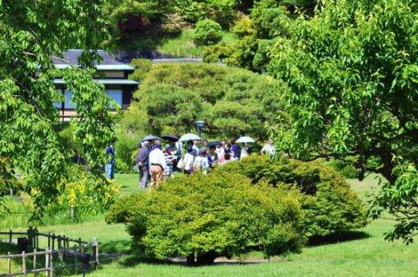 5月のお庭ツアー1