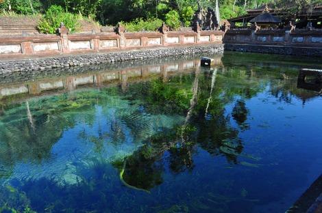 聖なる泉1