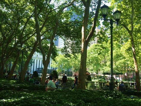 公園は緑がいっぱい