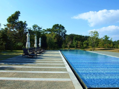 外のプール的な池