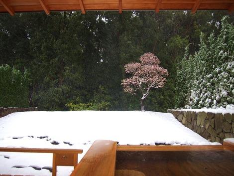 2014,2 雪の赤沢迎賓館