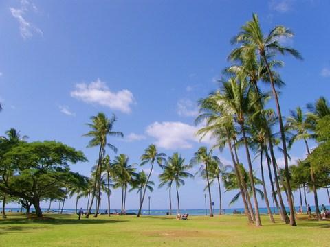 2010年ハワイ