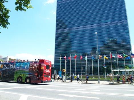 平日の国連