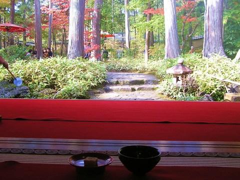 お庭でお抹茶 500円