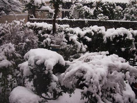 2013,1 大雪