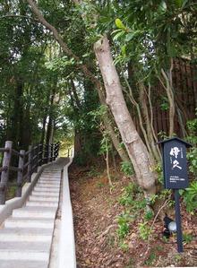 細くて急な階段です