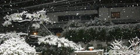 2月1日夜の雪