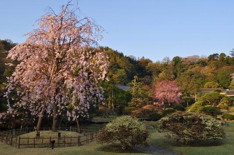 三養荘本館庭園